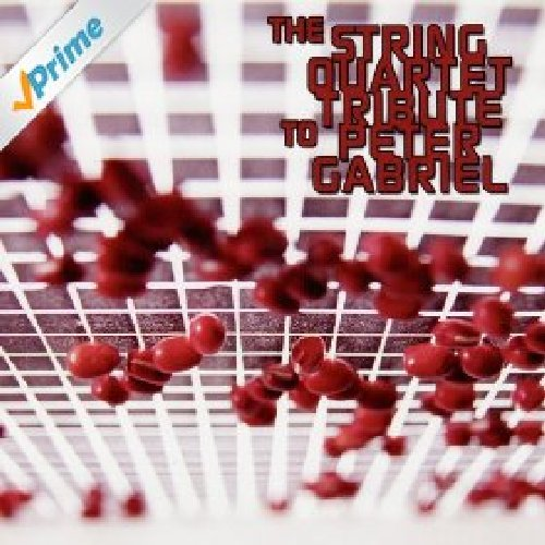The String Quartet Tribute To Peter Gabriel - Vitamin String Quartet