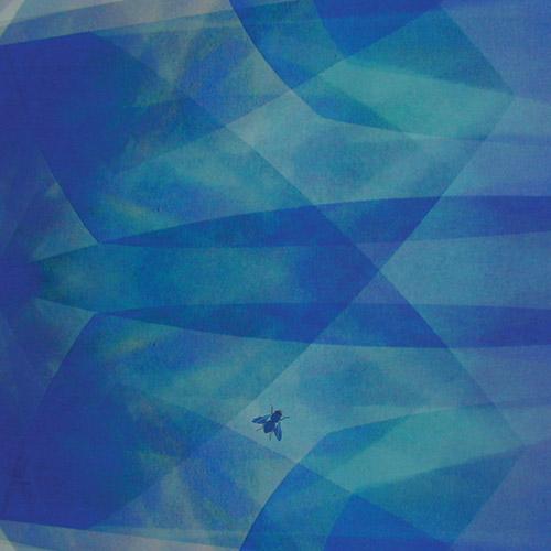 Bluefly - Cyro Baptista