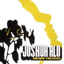 Orchid Unknown - Joshua Alo