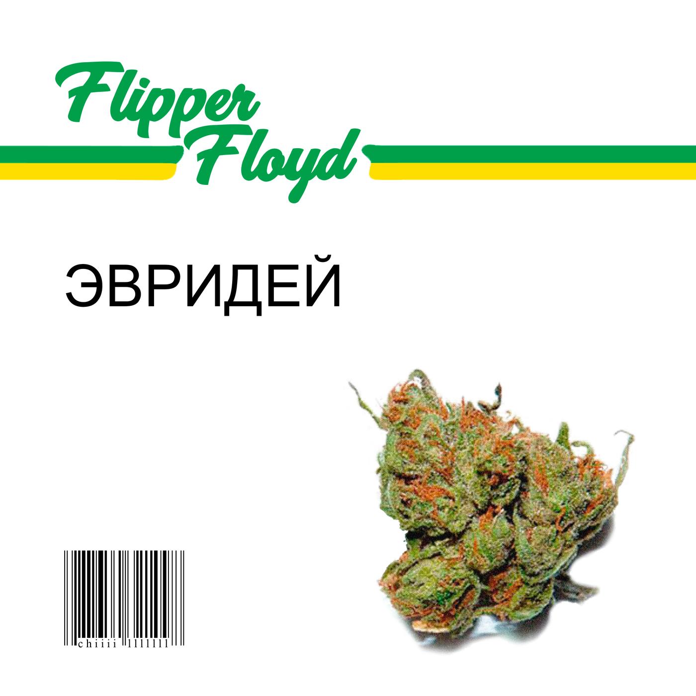 EVRIDEY - Flipper Floyd