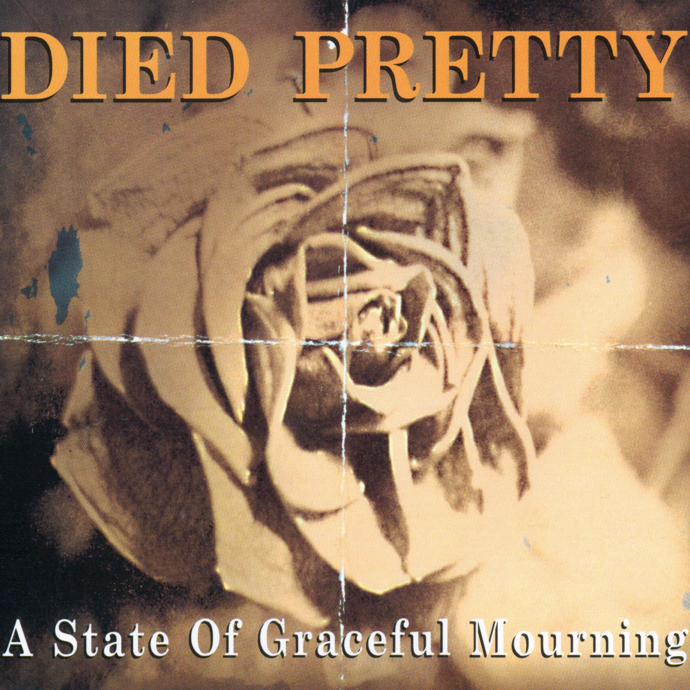 A State Of Graceful Mourning - Died Pretty