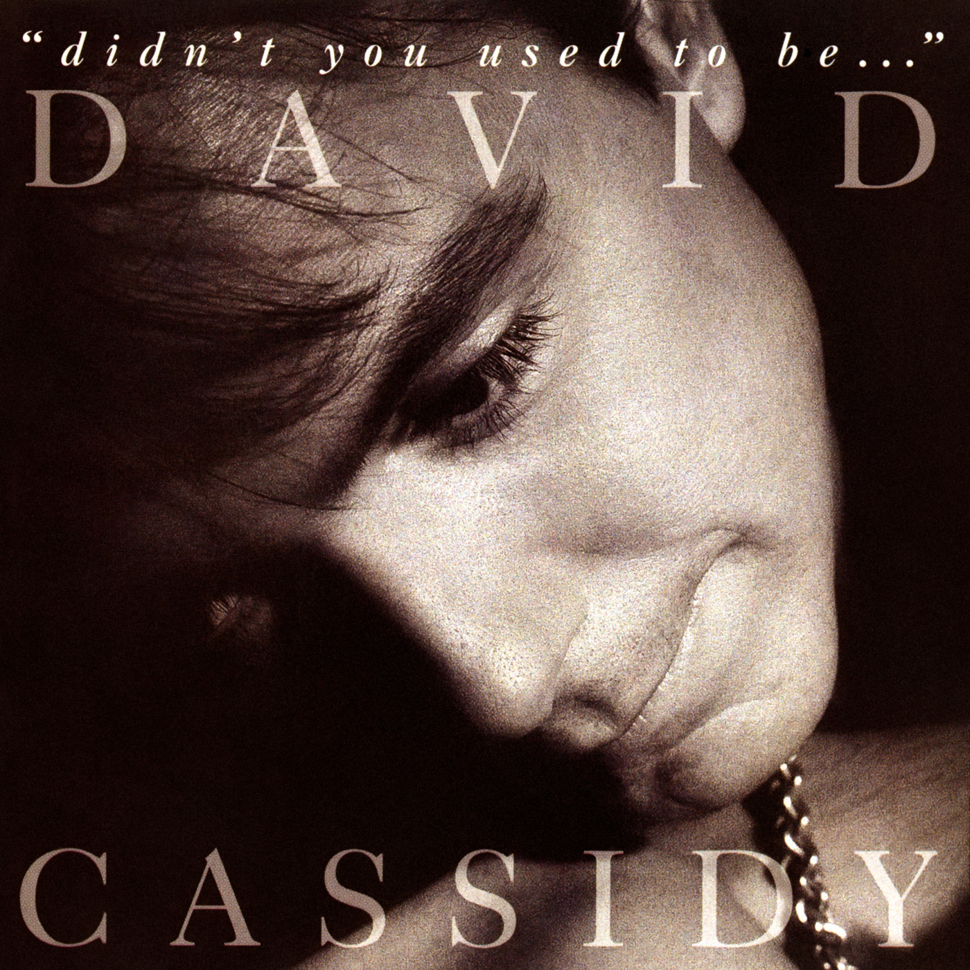 Didn't You Used To Be... - David Cassidy