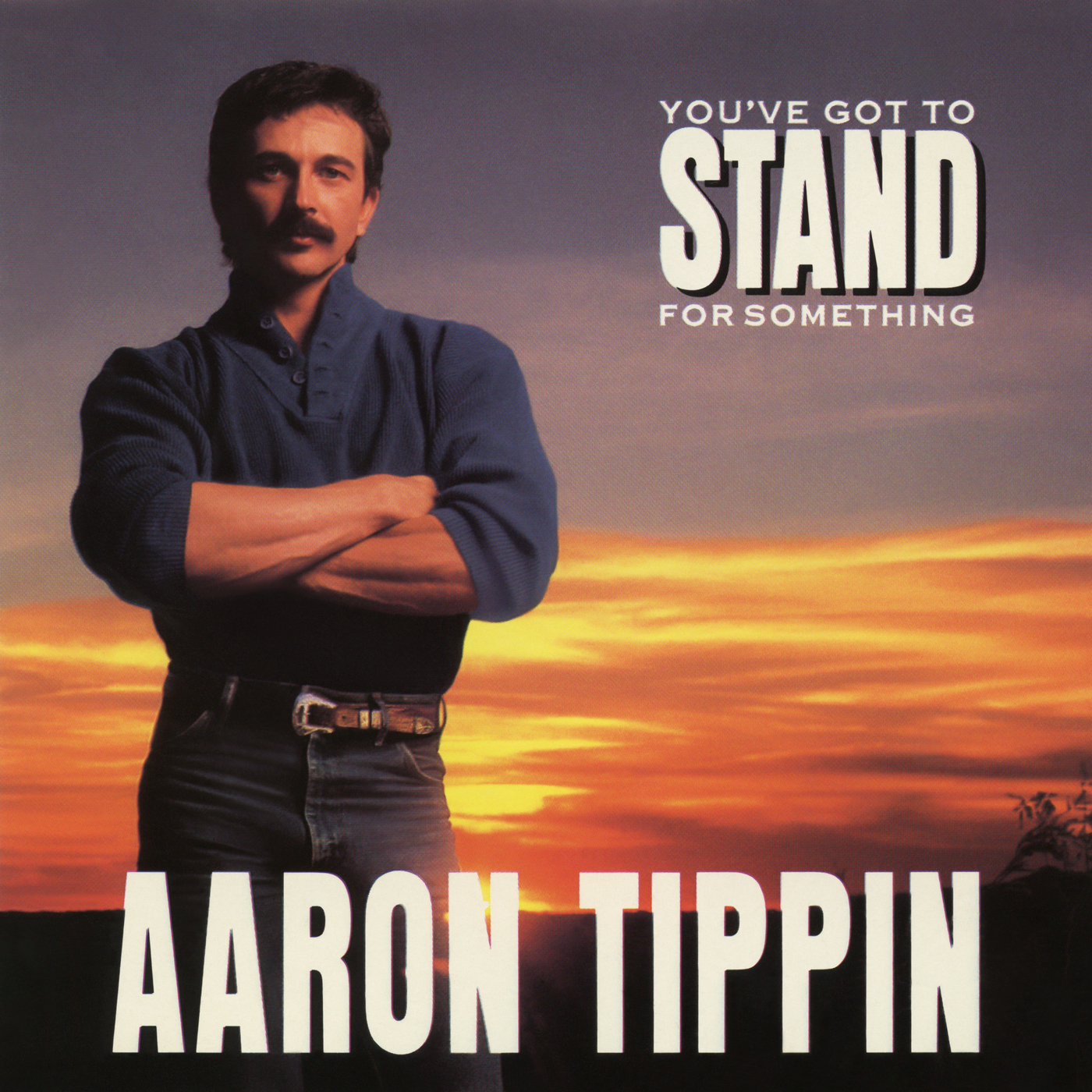 You've Got to Stand for Something - Aaron Tippin
