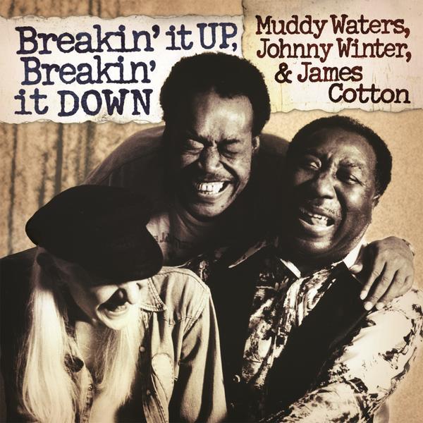 Breakin' It Up, Breakin' It Down - Muddy Waters