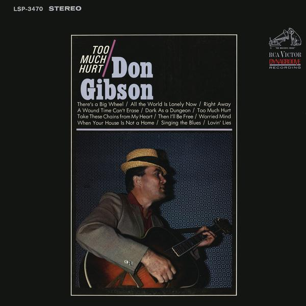 Too Much Hurt - Don Gibson