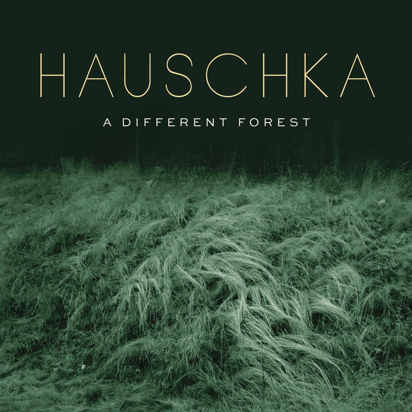 A Different Forest - Hauschka