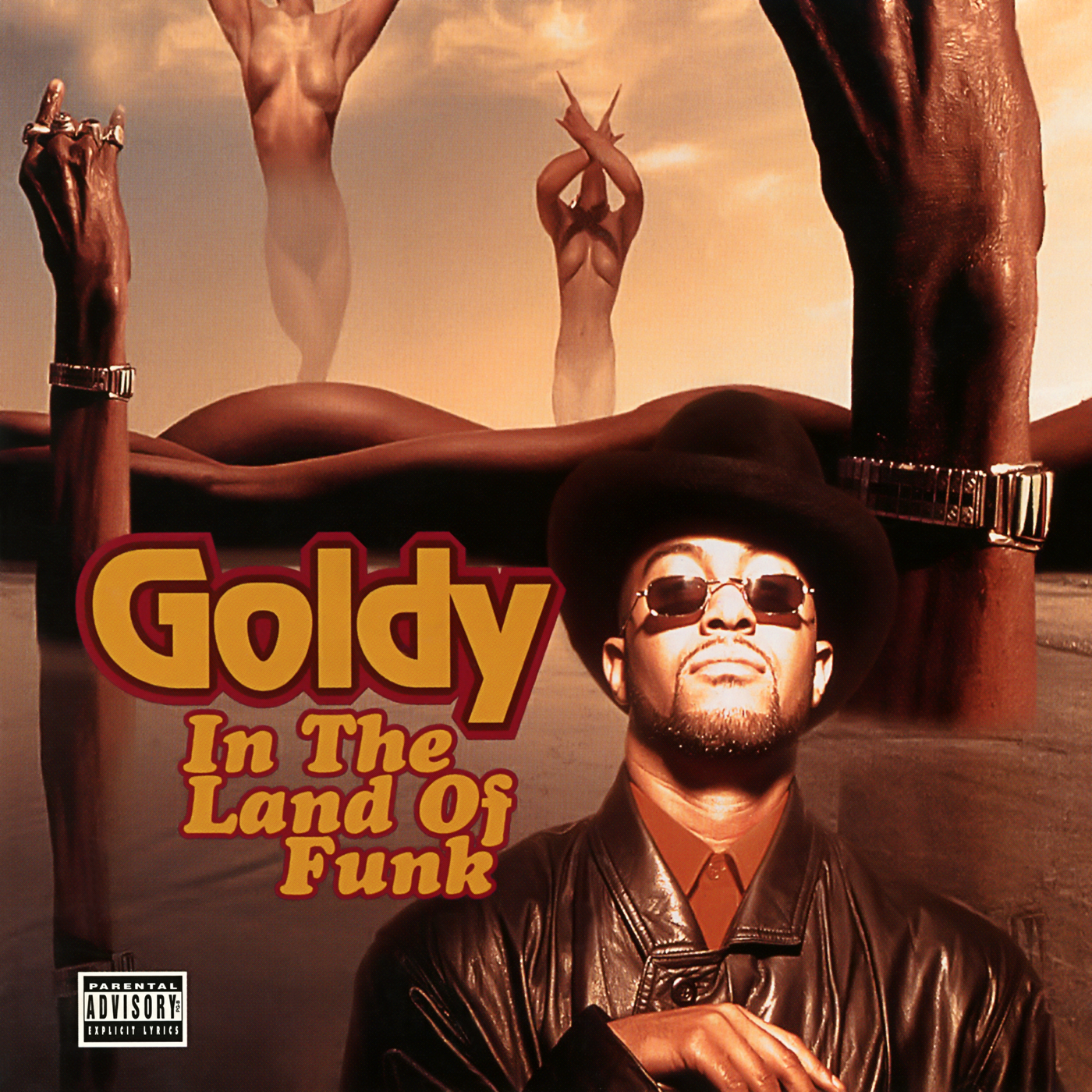 In the Land of Funk - Goldy