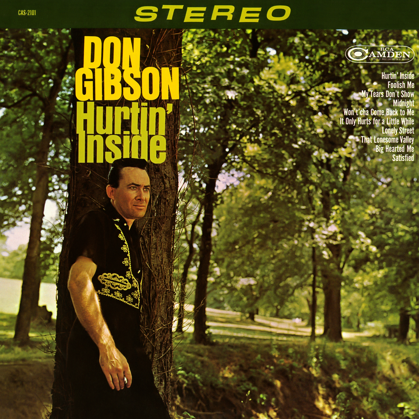 Hurtin' Inside - Don Gibson