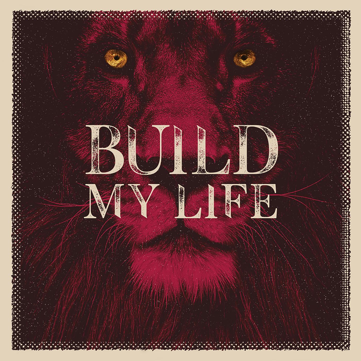 Build My Life - Lifeway Kids