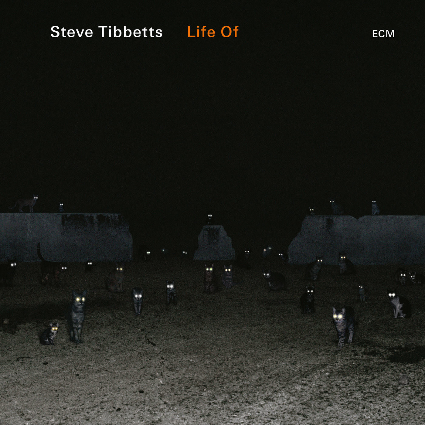Life Of - Steve Tibbetts