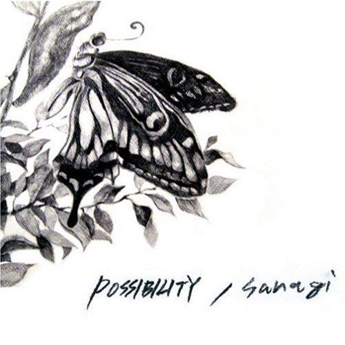 sanagi - POSSIBILITY