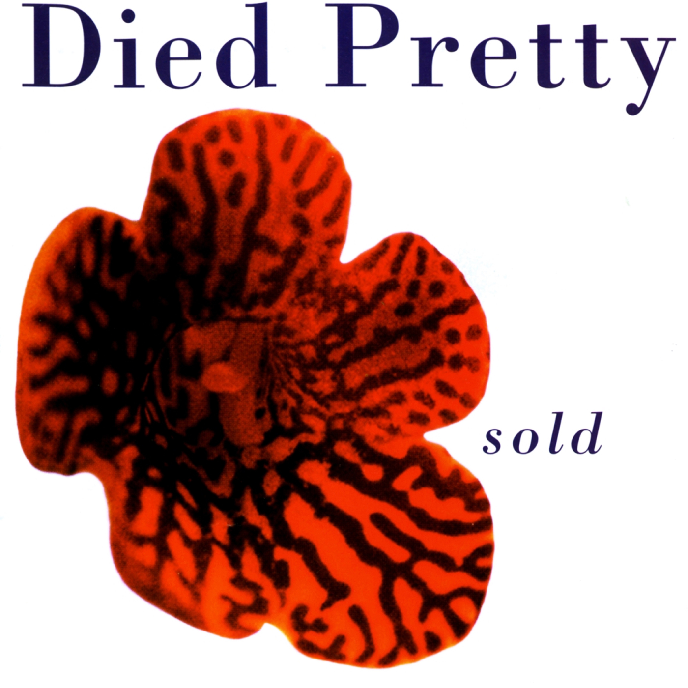 Sold - Died Pretty