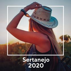 Sertanejo 2020 - Various Artists