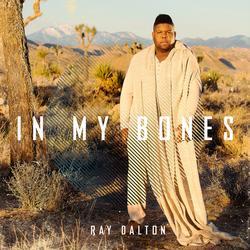 In My Bones (Malik Montana Remix) - Ray Dalton