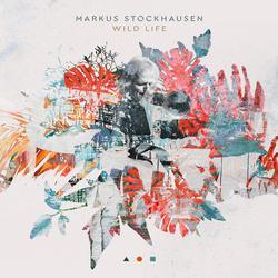 Moonlight In Your Face - Markus Stockhausen