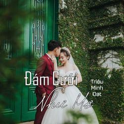 Đám Cưới Như Mơ (Single) - Triệu Minh Đạt