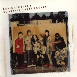 Very Greasy - David Lindley & El Rayo-X