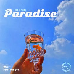 This is your paradise - Web.