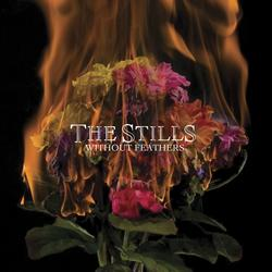 Without Feathers - The Stills