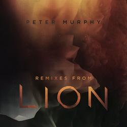 Remixes from Lion - Peter Murphy