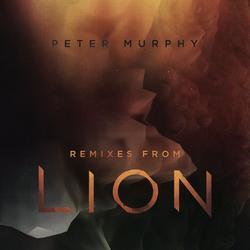 Remixes from Lion - Peter Murphy