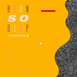 Burn So Deep (feat. Dawn Richard) [Remixes] - Jimmy Edgar