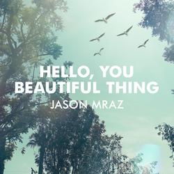 Hello, You Beautiful Thing - Jason Mraz