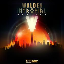 Intropial Remixes - Walden