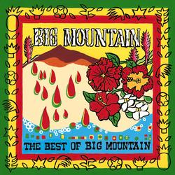 The Best Of Big Mountain - Big Mountain