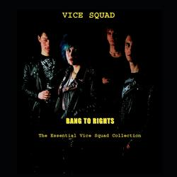 Bang To Rights: The Essential Vice Squad Collection - Vice Squad