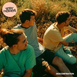 Desconfination - Stay Homas