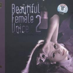 Beautiful Female Voice 2 - Various Artists