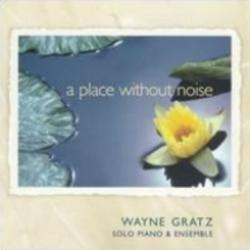 A Place Without Noise - Wayne Gratz