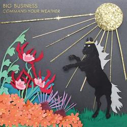Command Your Weather - Big Business