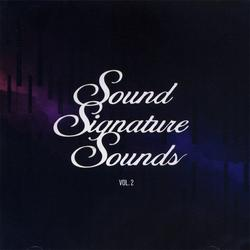 Sound Signature Sounds Vol. 2 - Theo Parrish