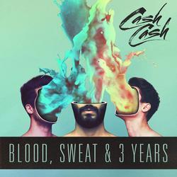 Blood, Sweat & 3 Years - Cash Cash