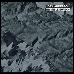 Invisible Switch - Joey Anderson