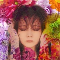 Fixer - Akina Nakamori