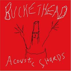 Acoustic Shards - Buckethead