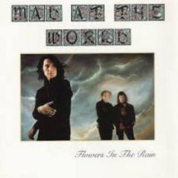 Flowers In The Rain - Mad At The World