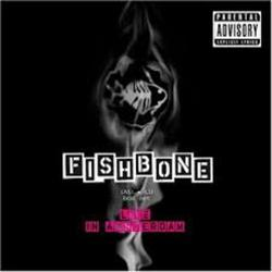 Live In Amsterdam - Fishbone