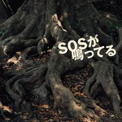 SOSが鳴ってる (SOS ga Natteru) - Reiran