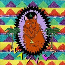 King Of The Beach - Wavves