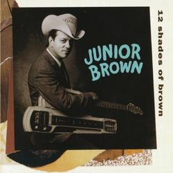 12 Shades Of Brown - Junior Brown