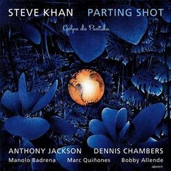 Parting Shot - Steve Khan