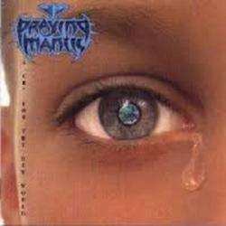 A Cry For The New World - Praying Mantis