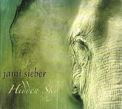 Hidden Sky - Jami Sieber