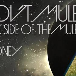 Dark Side Of The Mule - Gov