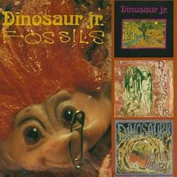 Fossils - Dinosaur Jr