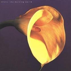 The Burning World - Swans